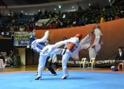 ▲지난, 제주평화기 전국 태권도 대회 장면.
